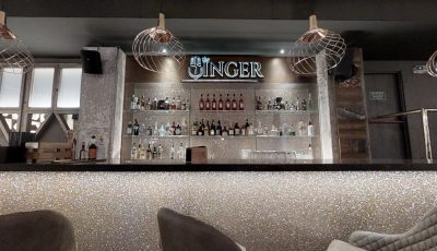 The Singer – Music Restaurant 3D Model